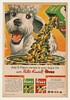 1963 Poodle Walter Kendall Fives Dog Food Print Ad