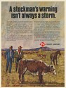 1971 Stockman's Warning Stockmen Cattle Ranchers Peavey Co Feed Plants Print Ad