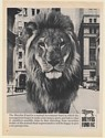 1968 Dreyfus Fund Mutual Investment Lion Photo Print Ad