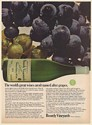 1973 Boordy Vineyards Yakima Valley Wine Great Wines Aren't Named Grapes Ad