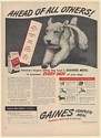 1947 Fox Terrier Gaines Complete Meal Dog Food Ahead of All Others Print Ad