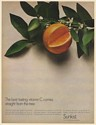1967 Sunkist Orange Best Tasting Vitamin C Comes Straight from the Tree Print Ad